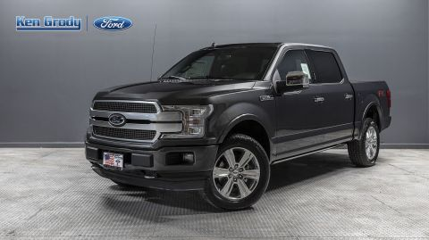 New 2019 Ford F-150 Platinum